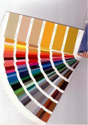 Alle Vordacher können auf Ihren Wunsch hin, in den RAL-Farben lackiert werden